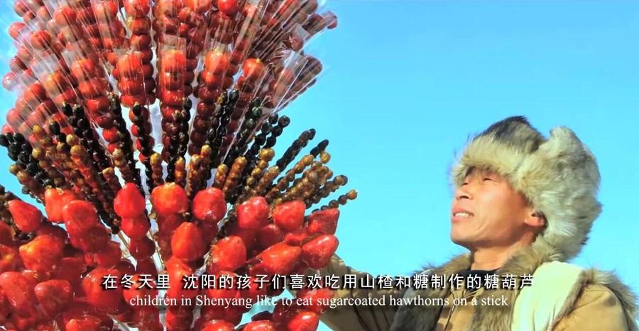 Журналистов 16 стран мира познакомили с Шэньяном в рамках виртуального тура