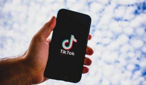 Василий Пискарев: соцсеть TikTok готова к сотрудничеству с правительством