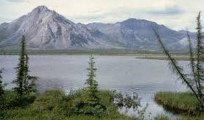 Кабмин планирует расширить «дальневосточный гектар» на Арктическую зону